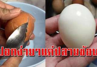 วิธีปอกเปลือกไข่ ทีละหลายฟอง ด้วยปลายช้อน ขาวสะอาด